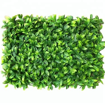 Wholesale decorative artificial boxwood hedge kumquat leaf for green wall