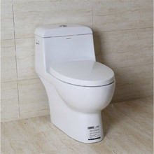 greatest pedestal squat toilet in sale