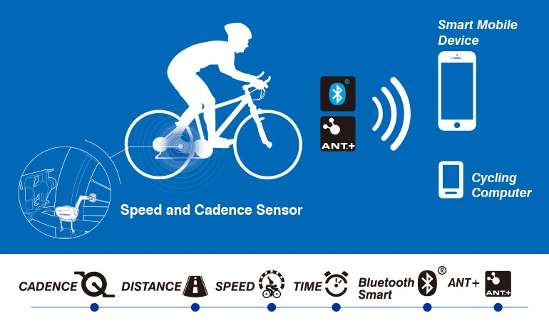 Zencro New Arrival Wireless Bluetooth and ANT+ Bicycle Cadence Speedometer Sensor For Sport Tracker