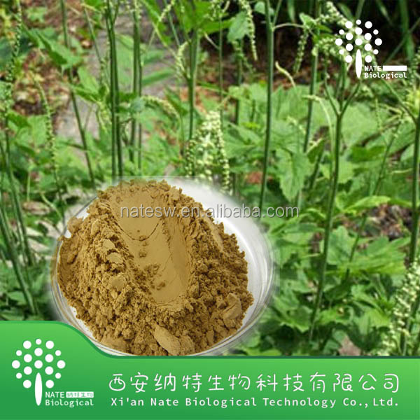 Healthy food with top quality 8% Triterpenoid Saponins Black Cohosh Extract