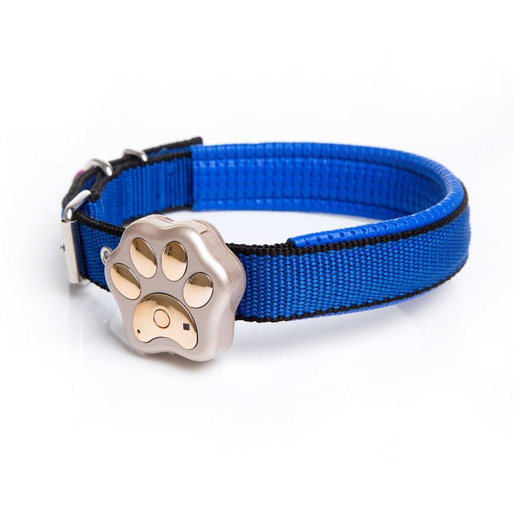 Dog Collar Tracking Device