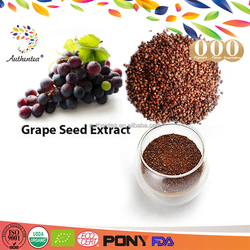 ISO certificated manufacturer high quality Grape Seed Extract