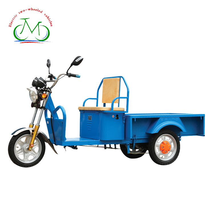 China Supplier self balancing smart cargo tricycle electric motorcycle
