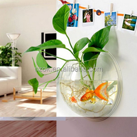 eco-friendly high clear hang on the wall acrylic fish tank cheap price