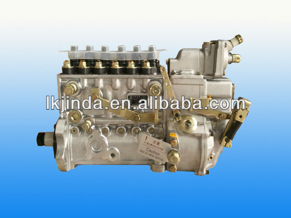 BP5365 Fuel injection pump