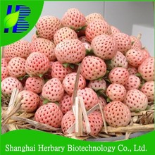 High germination fruit seeds for planting, White Strawberry Seeds For Sale