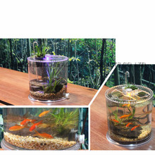 Wholesale custom clear plastic turtle tank