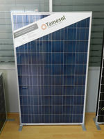 Photovoltaic module TM Series 240W POLY - AntiDumping