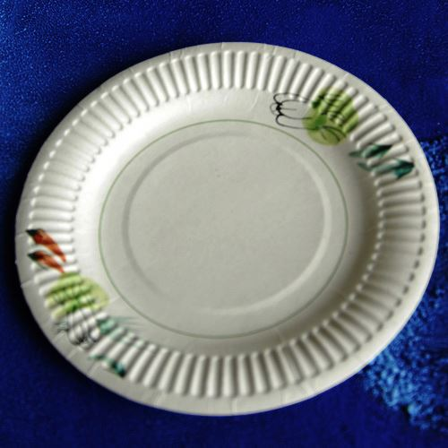 birthday party set / disposable paper plates recycled / bulk white dinner plates Green paper cup