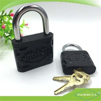The new design Precision globe padlock iron gate dia-cast lock