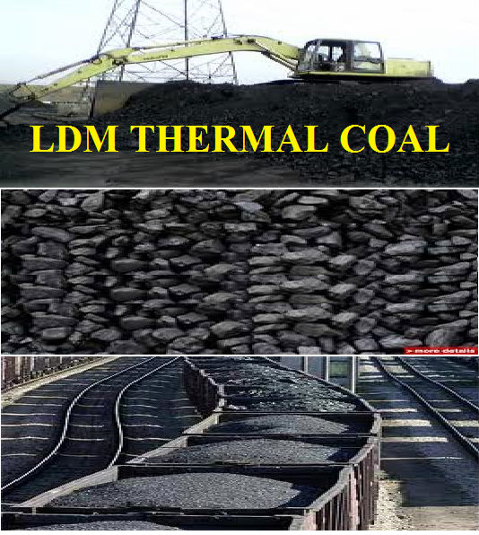 LDM THERMAL COAL