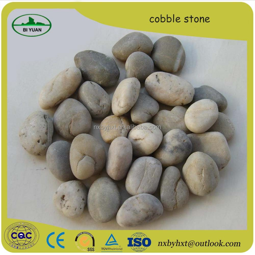 Wellest and cheapest cobble stone/ natural pebble stone