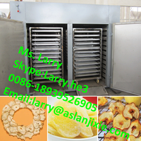 meat dryer/beef jerky making machine/meat drying machine