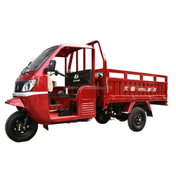 adult Iran 300cc gasoline 200cc250cc bajaj cng auto rickshaw price with good guality