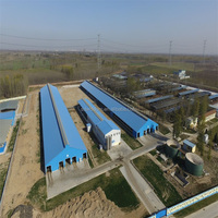 Wiskind New Steel Structural Warehouse for all over the world