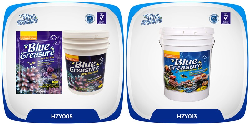 Blue Treasure Live Saltwater Fish Salt