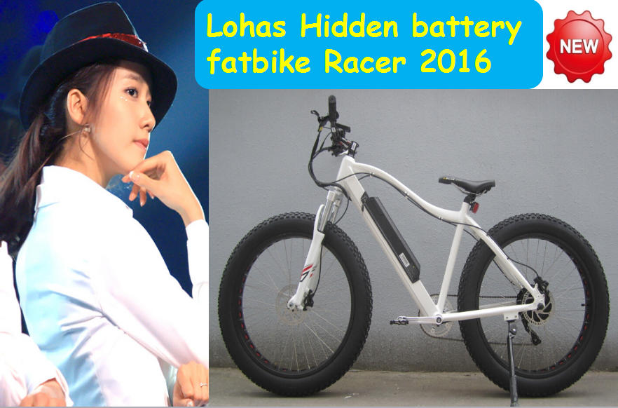 lohas 500W / 750W / 1000W electric bicycle with hidden battery KCMTB036
