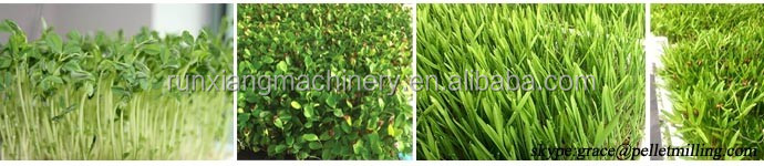 Animal fodder growing machine / Fodder planting machine / Fodder machine