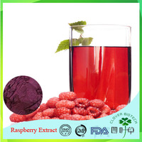 High Quality Low price best selling palm leaf raspberry fruit extract powder