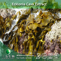 ISO Certificated Ecklonia cava extract Powder 10:1in 3W Factory