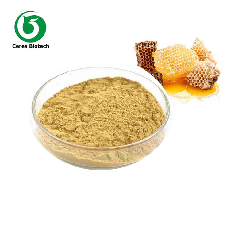 GMP Professional Manufacturer Supply Propolis Powder