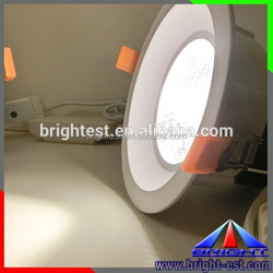 Dimmable Driver and Dali Driver available COB LED Downlight IP67 Waterproof LED light
