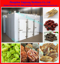 Best selling fruits drying oven price