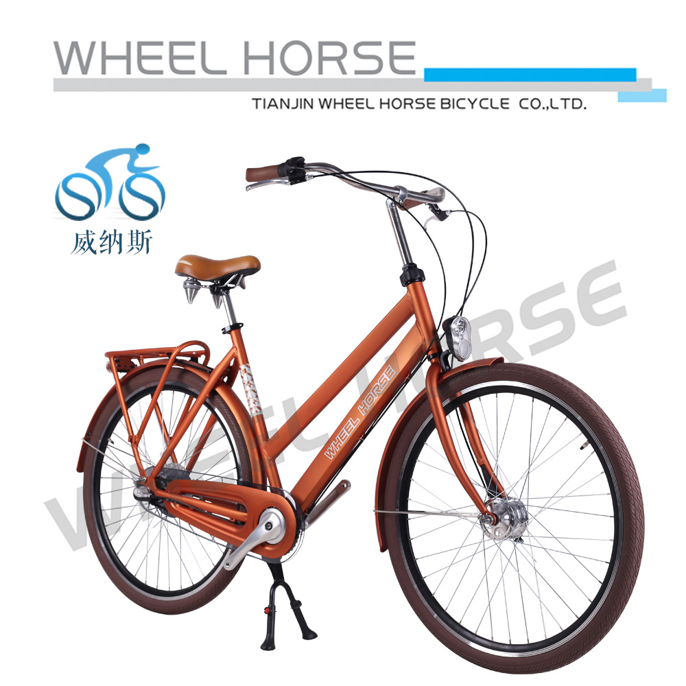 Europ 28 inch lady bike in bicycle tianjin
