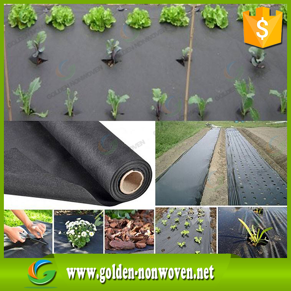 80-150gsm black color polypropylene spunbond non woven fabric with uv for agriculture weed control