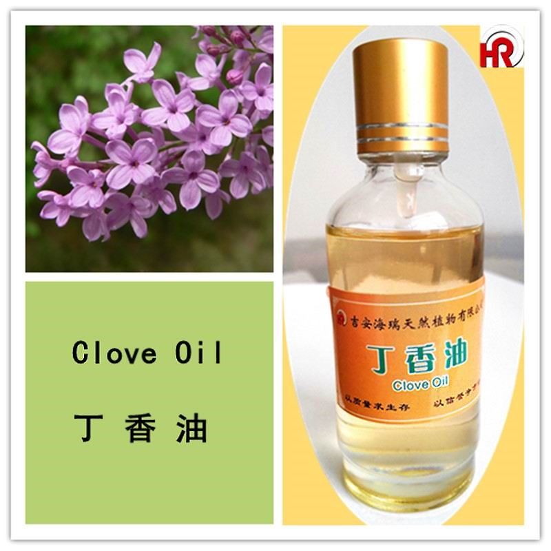China product clove essential oil price
