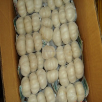Natural white garlic with high quality
