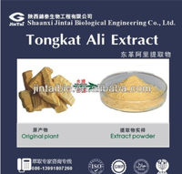 male sex product tongkat ali root extract