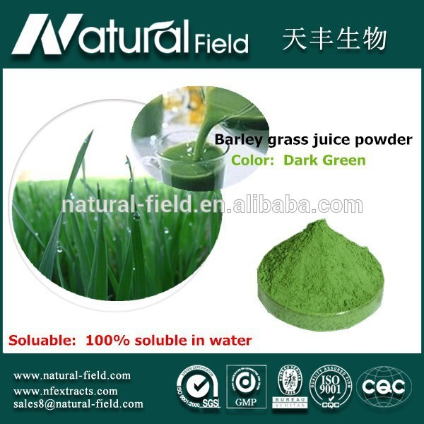 Prompt delivery Pure Nature barley malt extract juice powder
