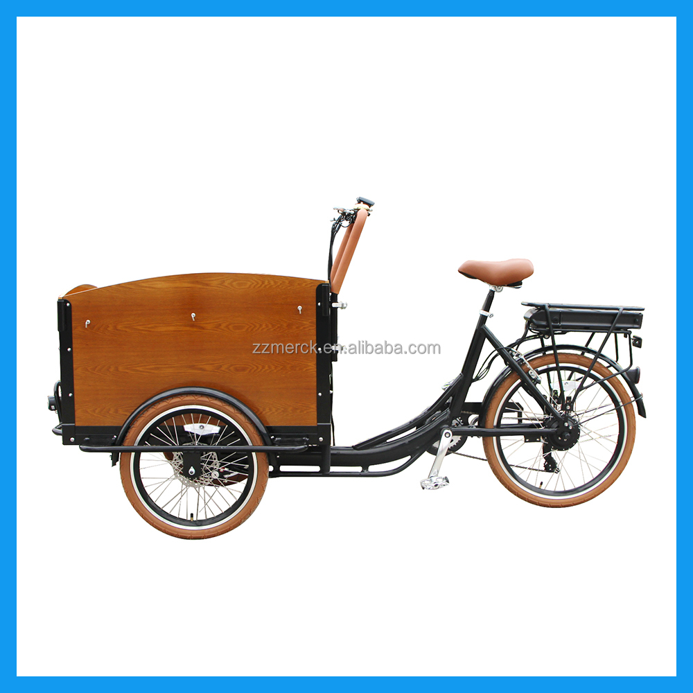 Family Utility Green Powered Electric Assist 3 Wheel Reverse Bike for Sale