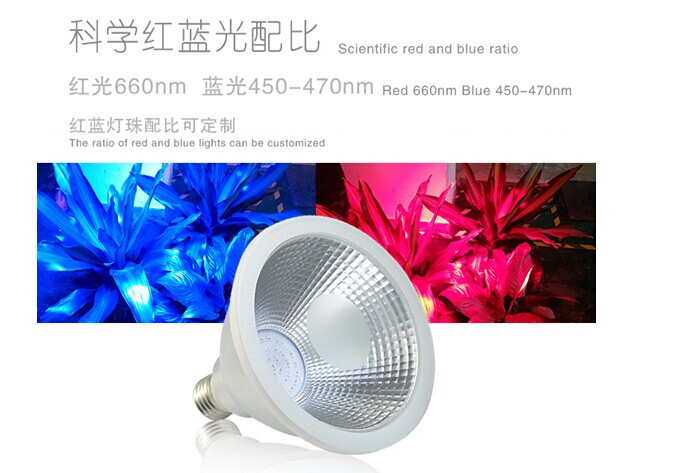 PAR38 15w LED grow light,15W led grow light E27 led plant lamps grow par light for flowers plants, grow spotlight AC85-265v d305