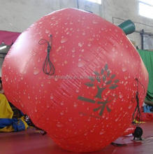 3m inflatable vegetable/inflatable apple fruit replica/inflatable model