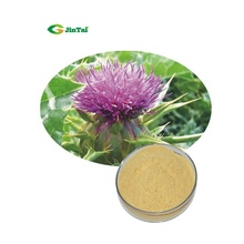 Pure Natural Extract Powder Form Milk Thistle 80% Silymarin Milk Thistle Extract Milk Thistle Extract Powder
