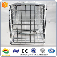 2017 live humane animal cage trap squirrels small rabbits mink skunks