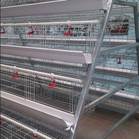 Poultry Farm In Malaysia Hot Sale Chicken Cage