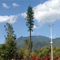 Camouflaged Pine Tree Telecom Tower for Sale