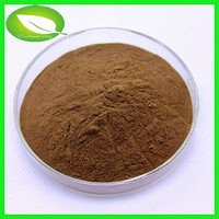 Dong Quai root extract /Dong Quai extract ligustilide 1% angelica root extract