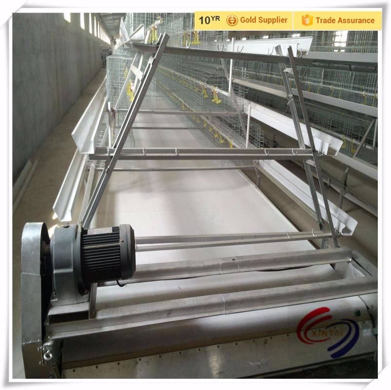 PP belt for chicken manure cleaning machine