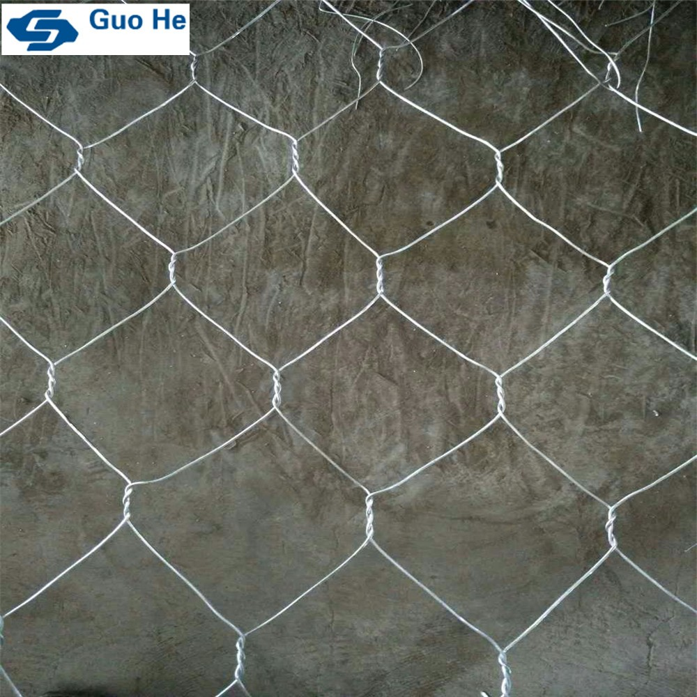 Chain link fence for dogs / wire mesh fence / gabion mesh