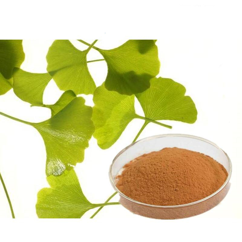 free sample HACCP KOSHER FDA manufacturer raw material natural 24/6 ginkgo biloba extract powder