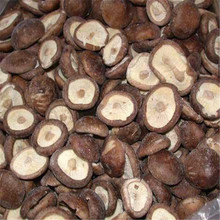 export new crop top grade IQF frozen shiitake mushroom at competitive price