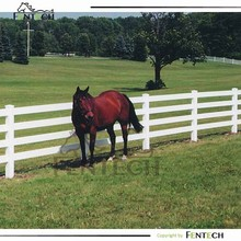 High Quality Cheap Dog Horse Run Fence Factory
