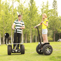 Chic Golf self balancing 2 wheel new electric scooter