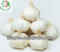 Chinese F.A.Q new pure white fresh garlic