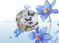 dinnr plate with full decal full printing, butterfly and flower classic full design