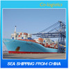 International shipping company offer the best ocean freight in China to world wide-roger